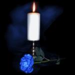 svecea sin
